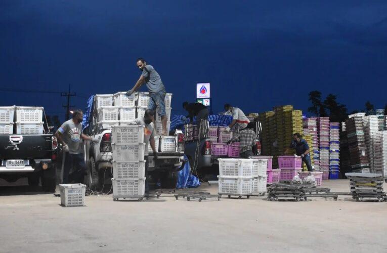ผู้แทนพิเศษรัฐบาลจับมือนายกฯโก-ลก ดึงผู้ประกอบการซื้อมังคุด หวังพลิกโก-ลกเป็นจันทบุรี2